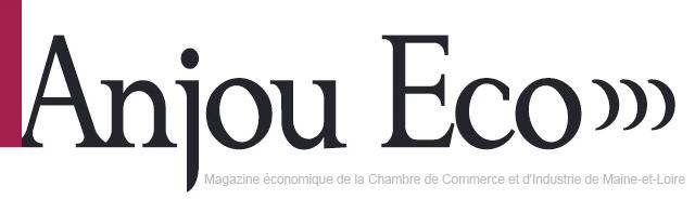 Logo Anjou Economique